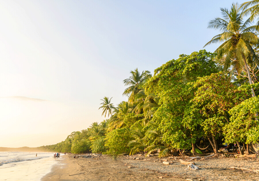 Uvita is the lush in green SUP Paradise in Costa Rica