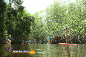 uvita-tree-sixty-costa-rica-sup-mangroves-sup-kayak-adventure-snorkel-ocean-osa-ballena-surfing-tour