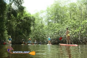 uvita-tree-sixty-costa-rica-sup-mangroves-sup-kayak-adventure-snorkel-ocean-osa-ballena-surfing-tour