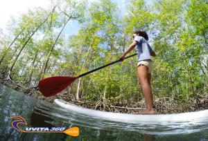uvita-tree-sixty-costa-rica-sup-surf-sup-kayak-adventure-osa-ballena-surfing-mangrove-tour