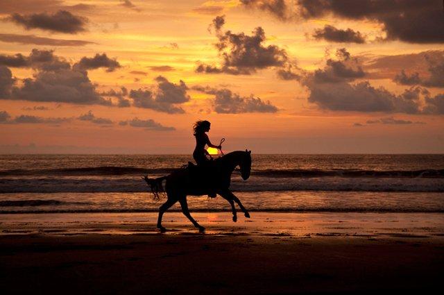 Horse Back Beach Ride