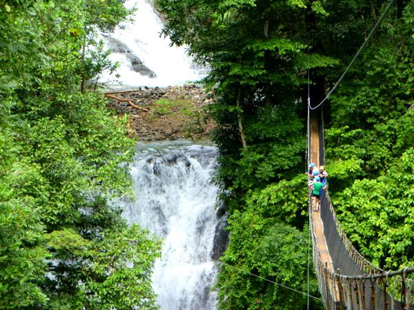 Waterfall Hanging Bridges