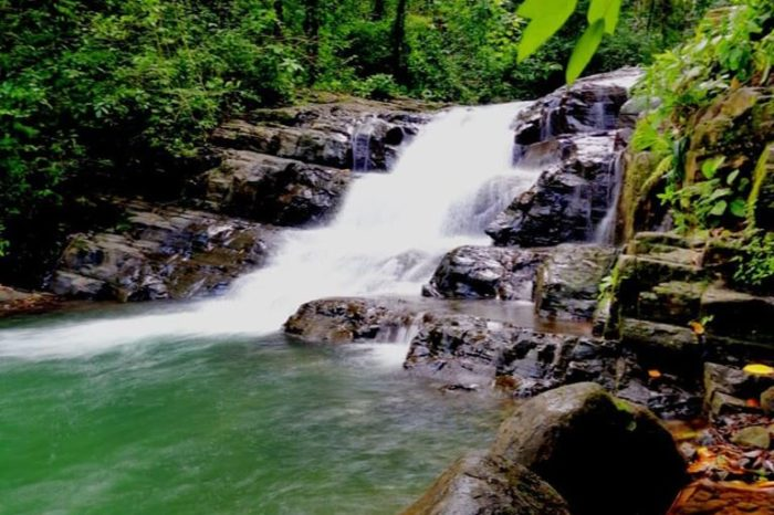 Uvita Waterfalls Lover Tour