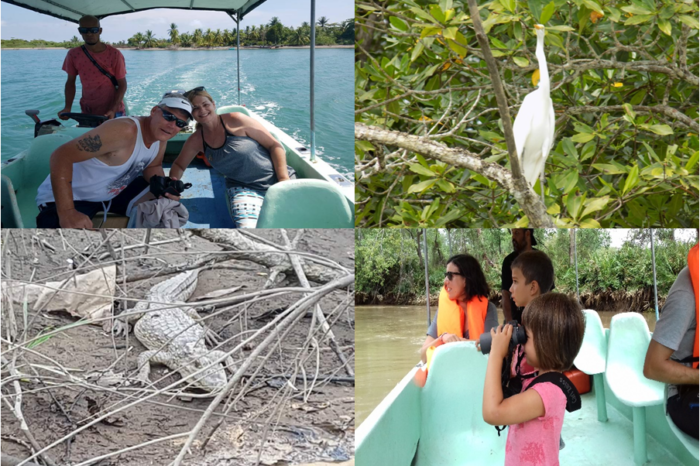 Mangrove tour by boat over the Terraba River